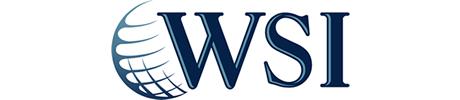 Franquia de marketing digital - WSI
