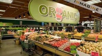 Como montar uma loja de produtos orgânicos. Veja o que é preciso para montar uma loja virtual com foco em produtos orgânicos.
