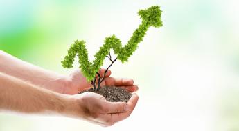 Negócios que crescem em tempos de crise. Veja uma lista de alguns negócios que apresentam crescimento em tempos de crise econômica