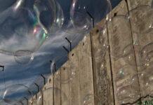 As bolhas de negócios na Internet surgem de tempos em tempos e deixam marcas profundas nos negócios online, principalmente histórias de perdas e muita desilusão. Veja nesta matéria como elas se formas, quais suas características e como evita-las.