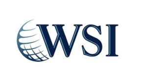 Franquia WSI. Uma opção de franquia na área do marketing digital
