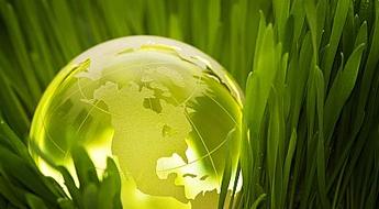 Ideias de negócios sustentáveis e lucrativos